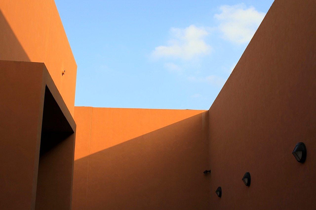 Himmelwärts. Das Bird of Prey Centre in Kalba, Sharjah
