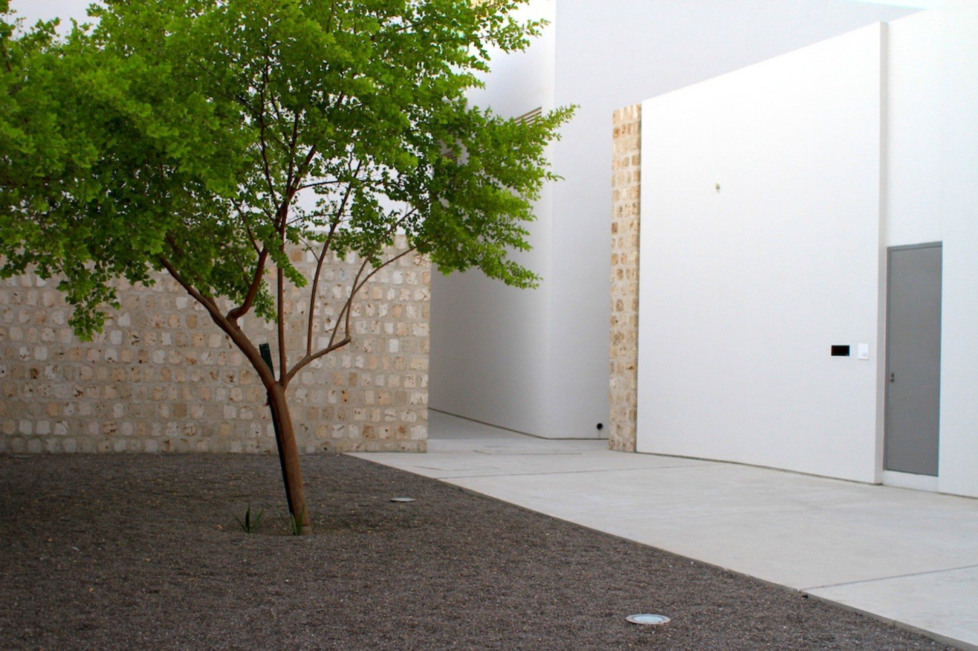 Kunst und Grün. Sharjah Art Foundation Art Spaces