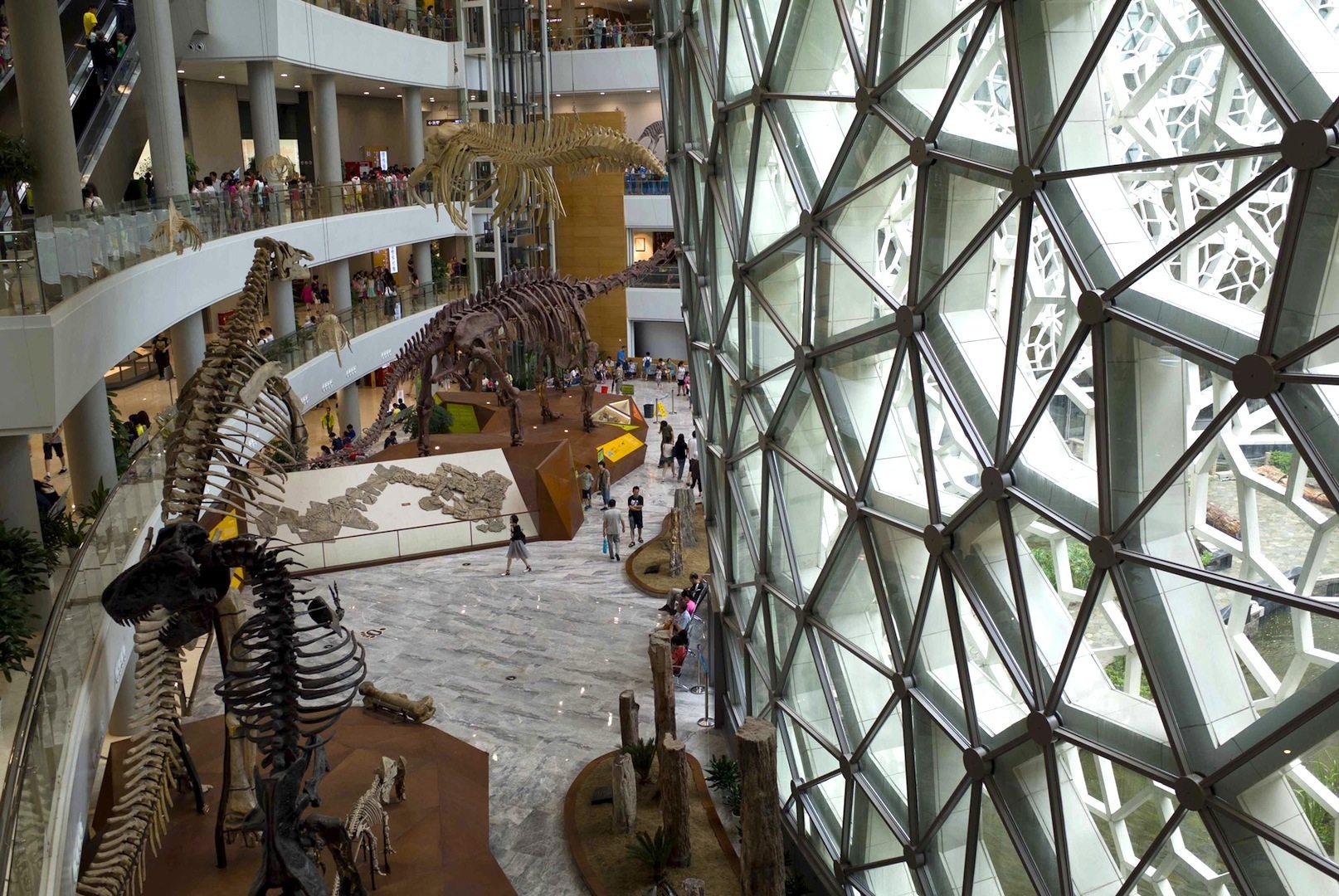 Shanghai Natural History Museum.