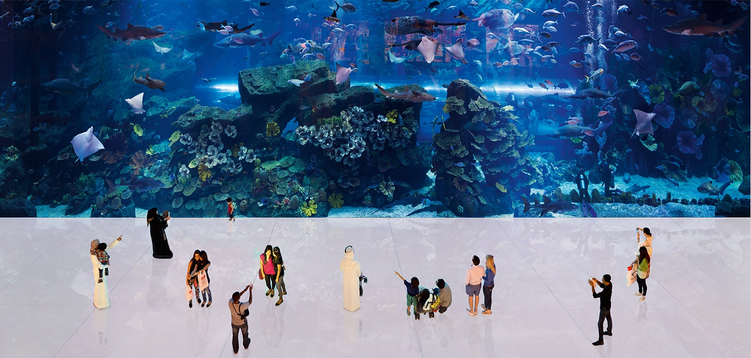 "Die Shoppingmall.  25°11'51""N, 55°16'43""E, Dubai Mall, The Aquarium, 2010, 70 x 147 cm"