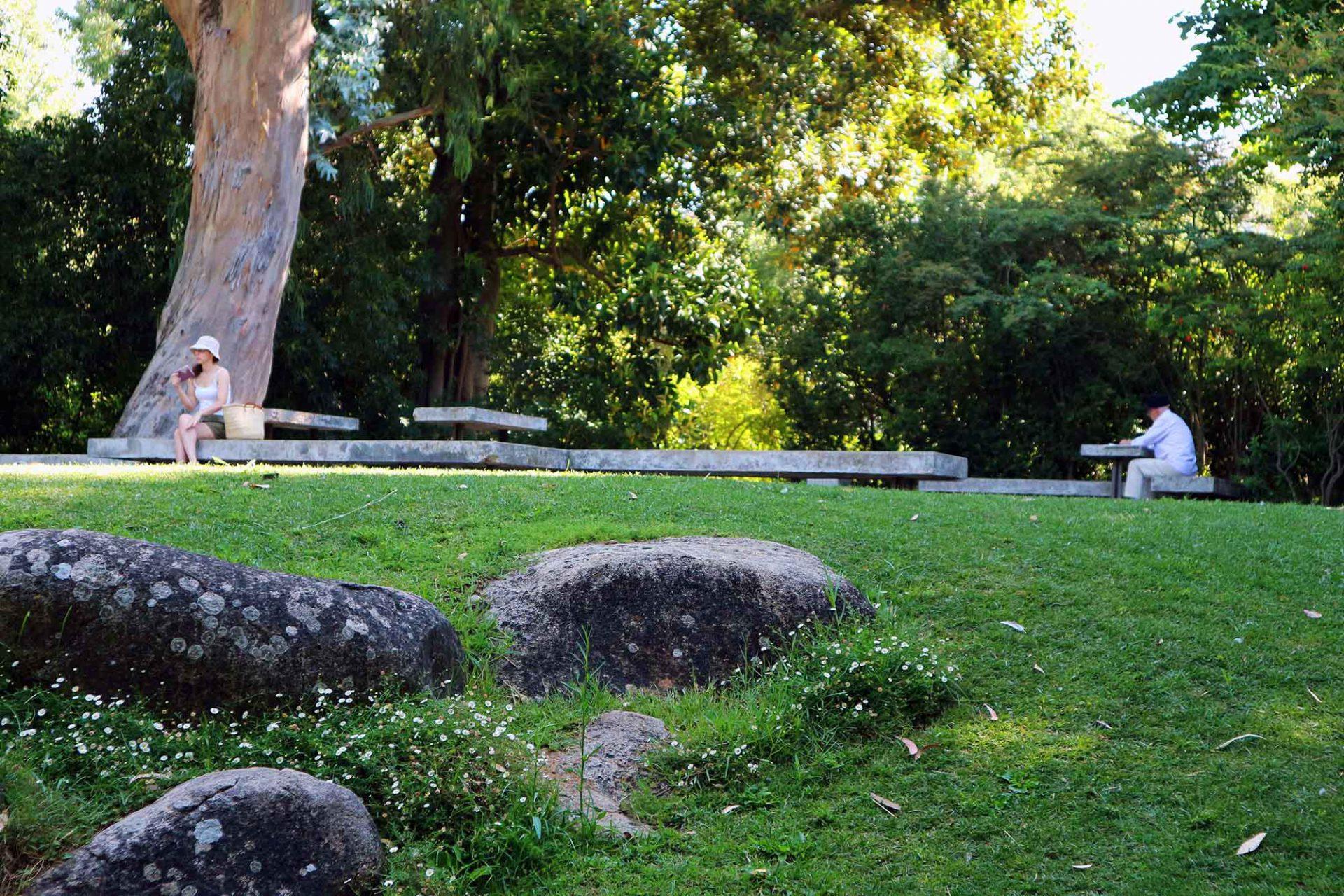 Der Park. Anstelle des heutigen Museumsparks eröffnete 1884 Lissabons erster Zoologischer Garten. Später befanden sich hier zunächst eine Pferderennbahn und schließlich ein beliebter öffentlicher Park. 1957 wurde ein großer Bereich an die Calouste Gulbenkian Foundation veräußert. Eine Landschaftsschutzzone wurde von Beginn an fest im Park eingeplant.