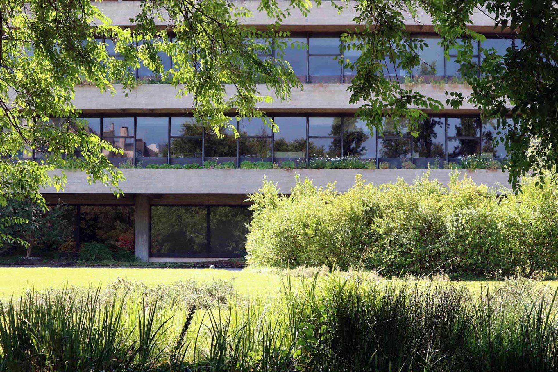 Der Stiftungssitz. Die modulare Wiederholung, das strenge Design und die harte Materialwahl aus Glas und Beton stehen dabei einerseits im starken Kontrast zur Natur.