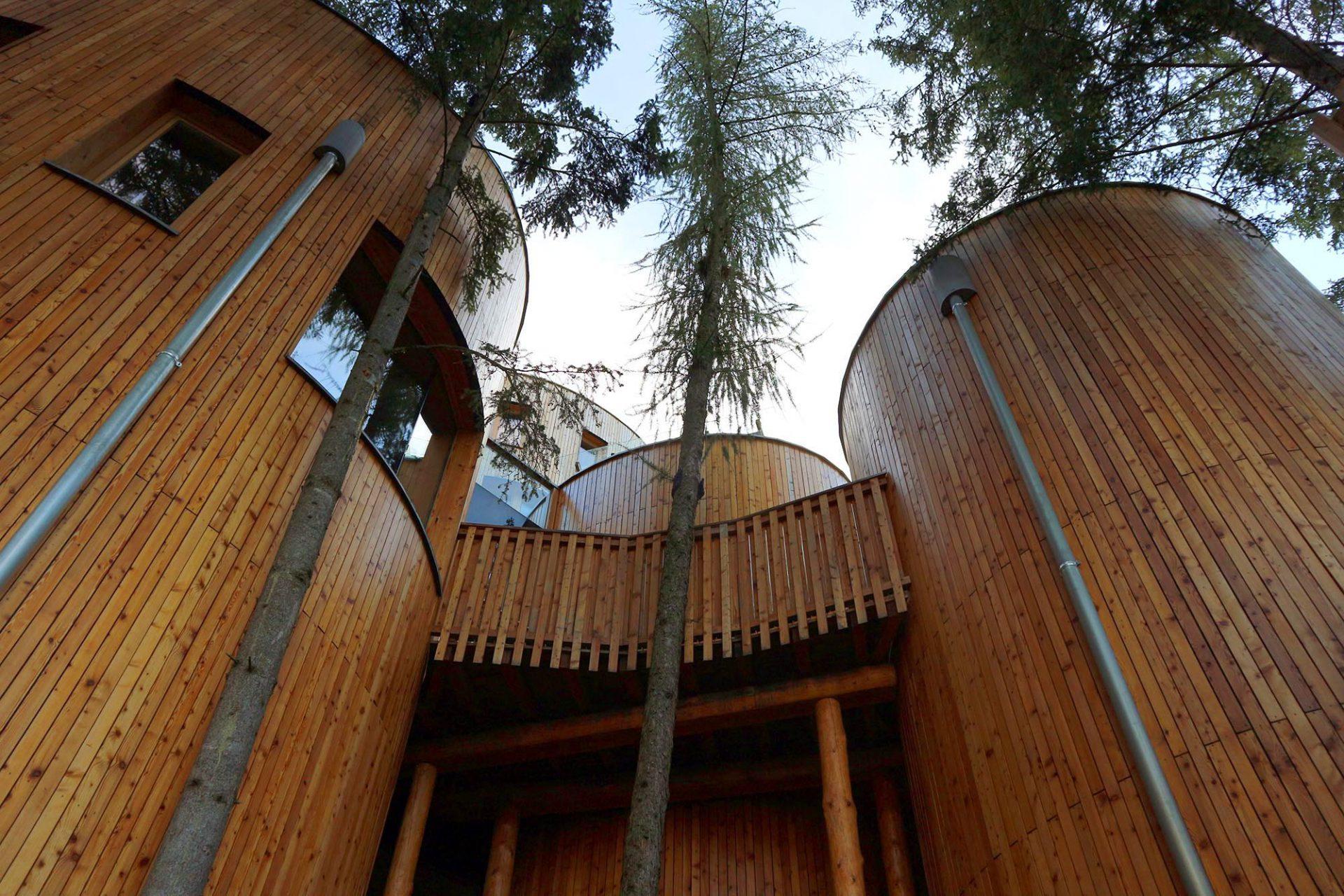 Naturhotel Waldklause. Die Wände sind aus Holz und Glas, die Böden aus Stein, die Teppiche aus reinen Naturfasern.