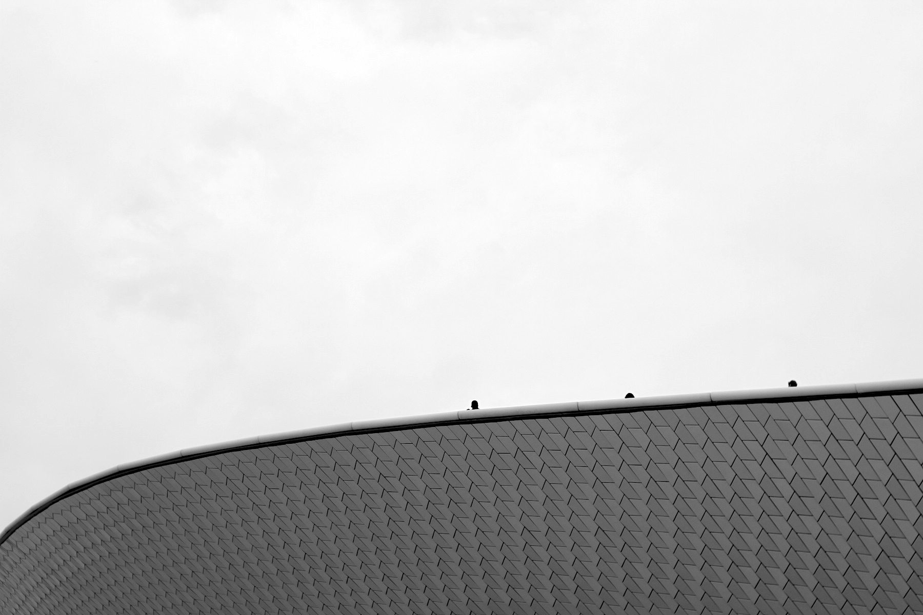 MAAT.  Das begehbare Dach der Kunsthalle mit drei Köpfen.