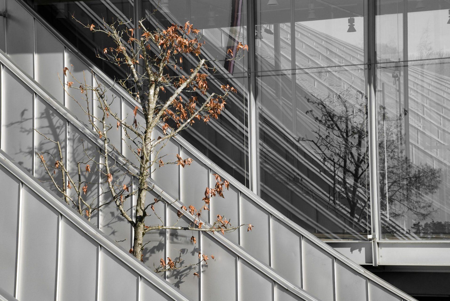 Zentrum Paul Klee.