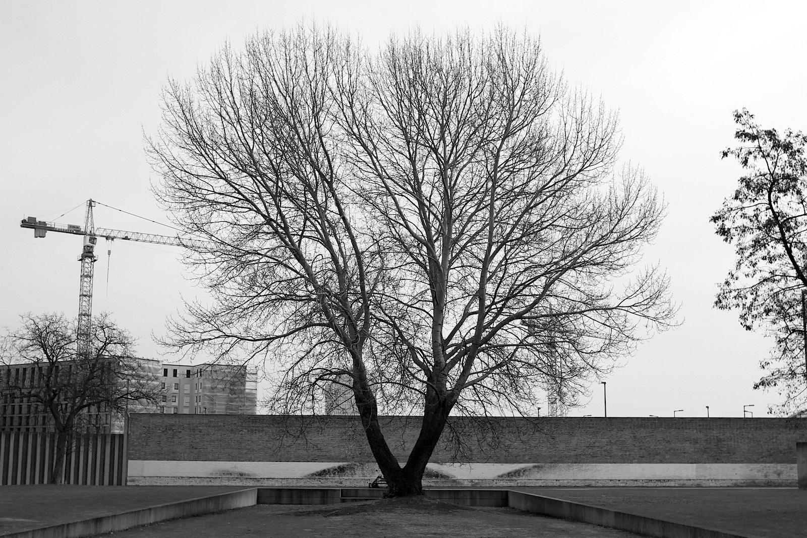 """Tageslicht als Dramaturg.  Im September 2007 erhielt das Projekt den 1.Preis des """"daylight spaces award 2007 - international architecture and design competition"""" aufgrund der besonderen Nutzung des Tageslichtes als dramaturgisches Gestaltungsmittel in Verbindung mit dem Thema des Parkes. Hinzu kam der zweite Preis des """"Made in Germany - Best of Contemporary architecture."""""""