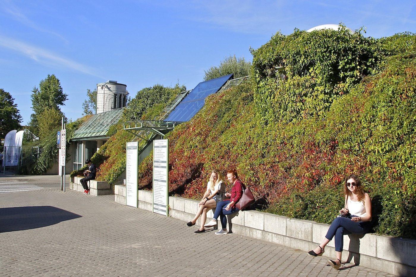 Grüne Wände.  Pflanzen ziehen sich die meisten Außenwände der Universitätsbibliothek hoch.