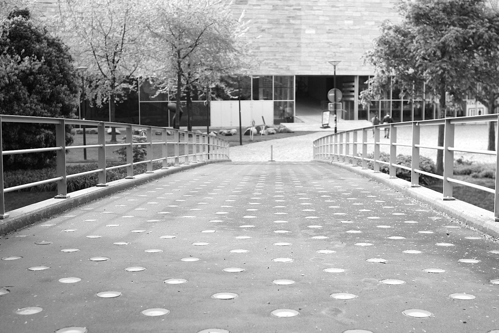 Museumspark Rotterdam.  Teile des Parks hat Roberto Burle Marx (1909–1994) geschaffen. Marx war brasilianischer Landschaftsarchitekt und Maler. Die Brücke führt vom Museum Boijmans Van Beuningen kommend gen Kunsthal Rotterdam.