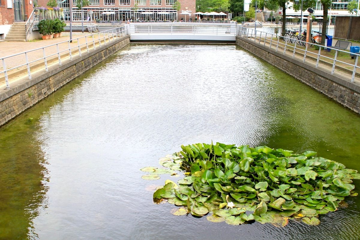Canals. Part of the master plan: A tree-lined promenade was created along the waterfront and canals were excavated as armatures for new housing development.