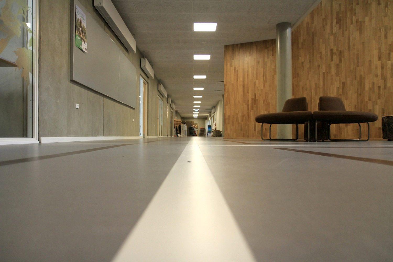 Skovbakkeskolen, Odder. Linien als Renn- und Laufstrecken