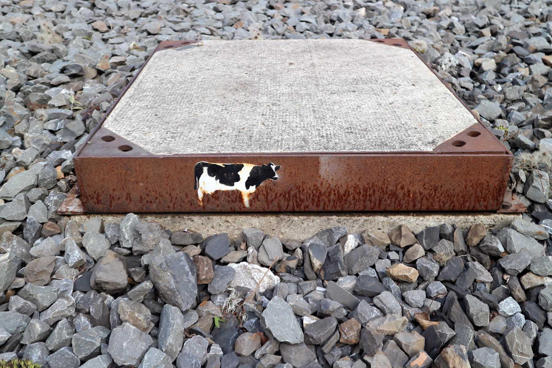 Zeche Zollverein. Zechenkunst mit Kuh