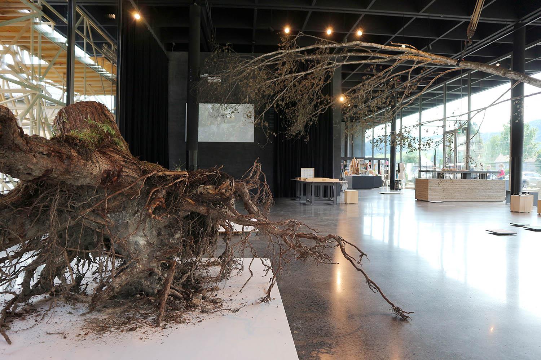 Werkraum Bregenzerwald. Ausstellung von 23.6.–6.10.2018