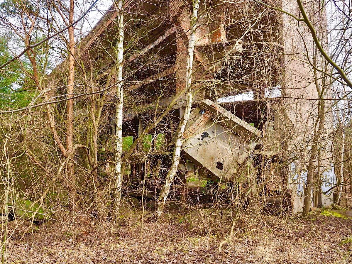 Spurensuche. Drei der acht Bettenhäuser haben die sowjetischen Besatzer weg gesprengt oder zur malerischen Ruine zerschossen. Zukunft ungewiss.
