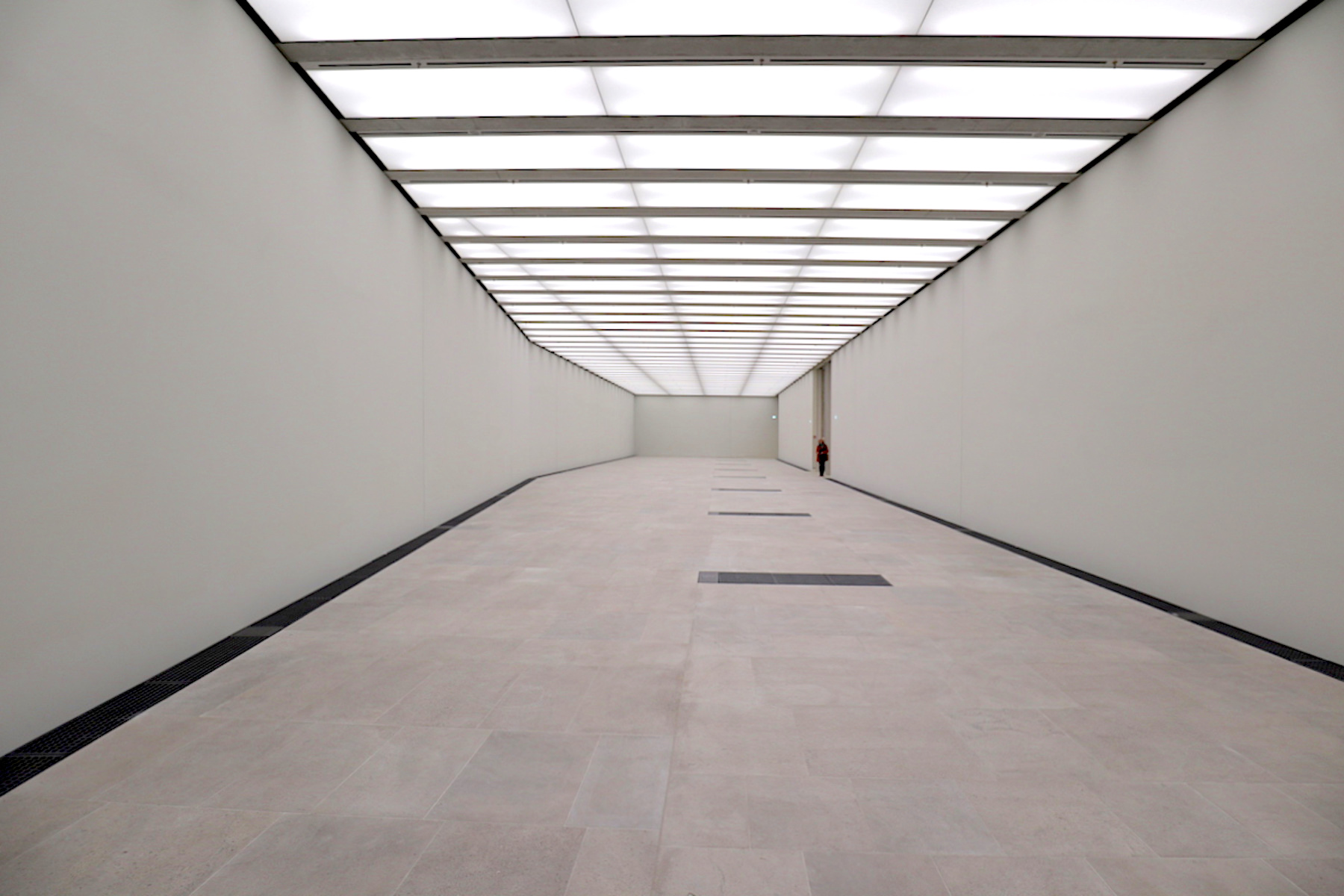 James-Simon-Galerie. Der Raum für Sonderausstellungen